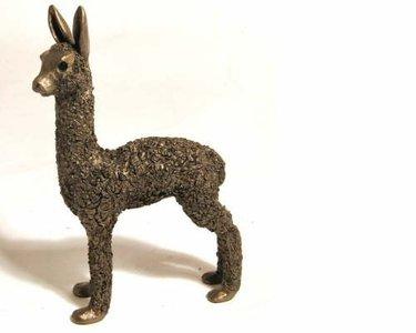 Alpaca cria staand
