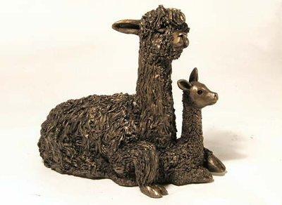 Alpaca met cria zittend