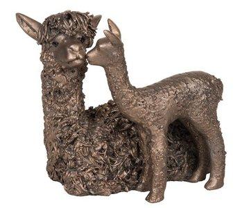 Alpaca met cria staand
